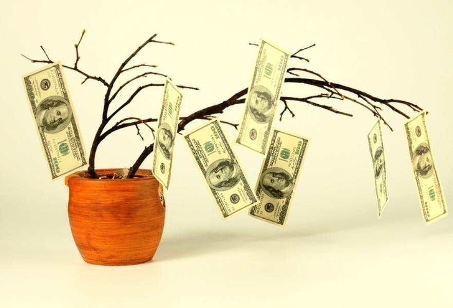 Деньги на деревьях не растут