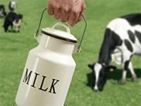 Открываем молочную ферму