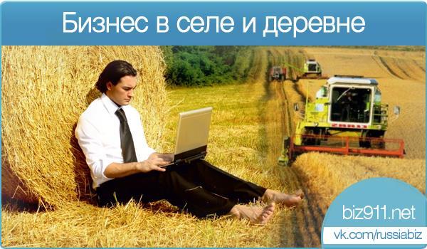 Бизнес в деревне и селе