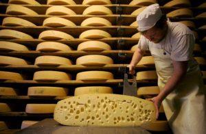 Рентабельность бизнеса по производству домашних сыров