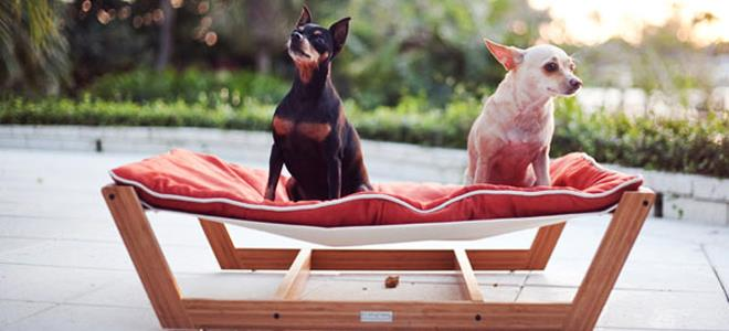 создание мебели для домашних животных