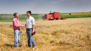 С чего начать сельскохозяйственный бизнес