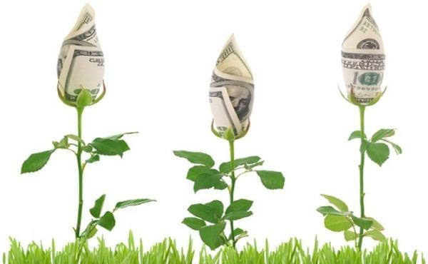 рентабельность цветочного бизнеса