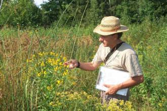 Эколог изучает траву