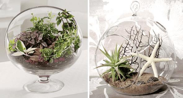 14. Флорариумы – инновационная идея создания мини-садов в стеклянных емкостях. Источник: Онлайн-журнал «Уютный дом».