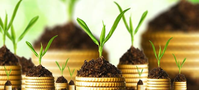 Идеи для малого бизнеса в сельской местности