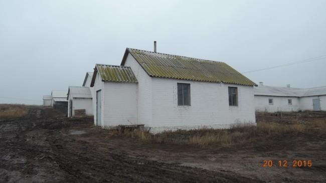 здание свинарника