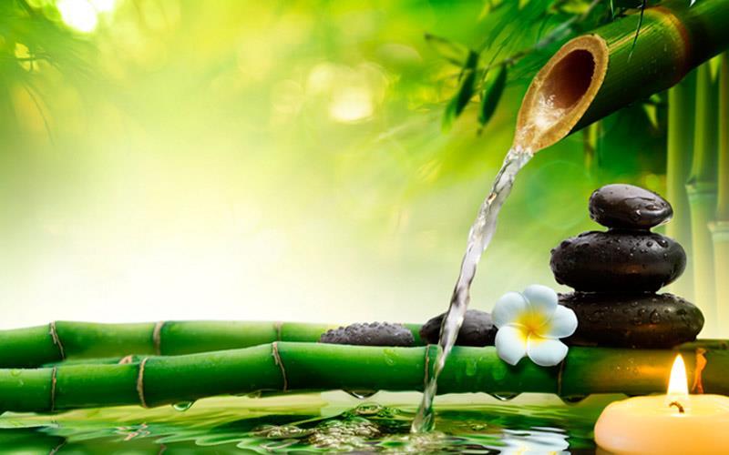Как зеленый цвет влияет на человека по фен шуй