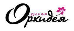 Белорусская франшиза Кофе Саунд