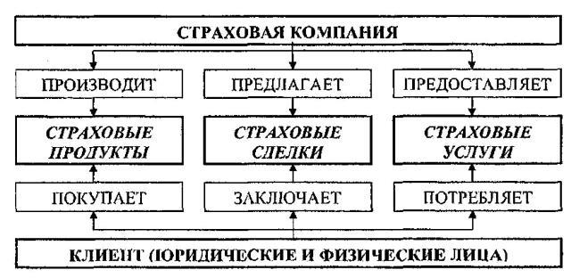 Структура отношений страховой компании с клиентом
