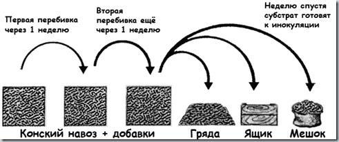 Процесс подготовки субстрата к инакуляции