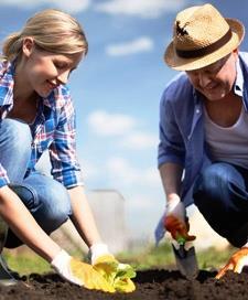 Как создать фермерское хозяйство с нуля