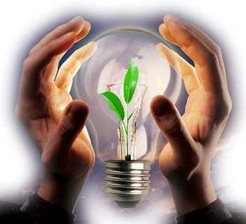 Spzlat biznes idea