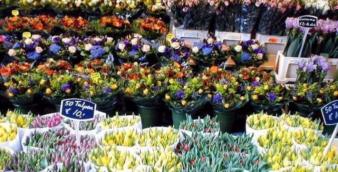 Большой выбор цветов - залог успеха