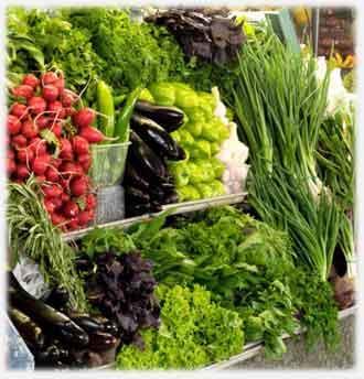 Выращивание зелени в теплице как бизнес - достаточно прибыльное дело