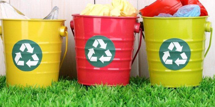 Как открыть завод по переработке мусора с нуля, с чего начать и сколько можно заработать