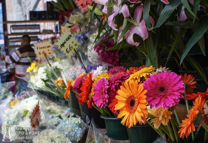 цветочный бизнес - как выбрать предприятие для покупки и как вести