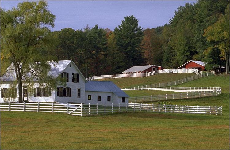 Загородная ферма