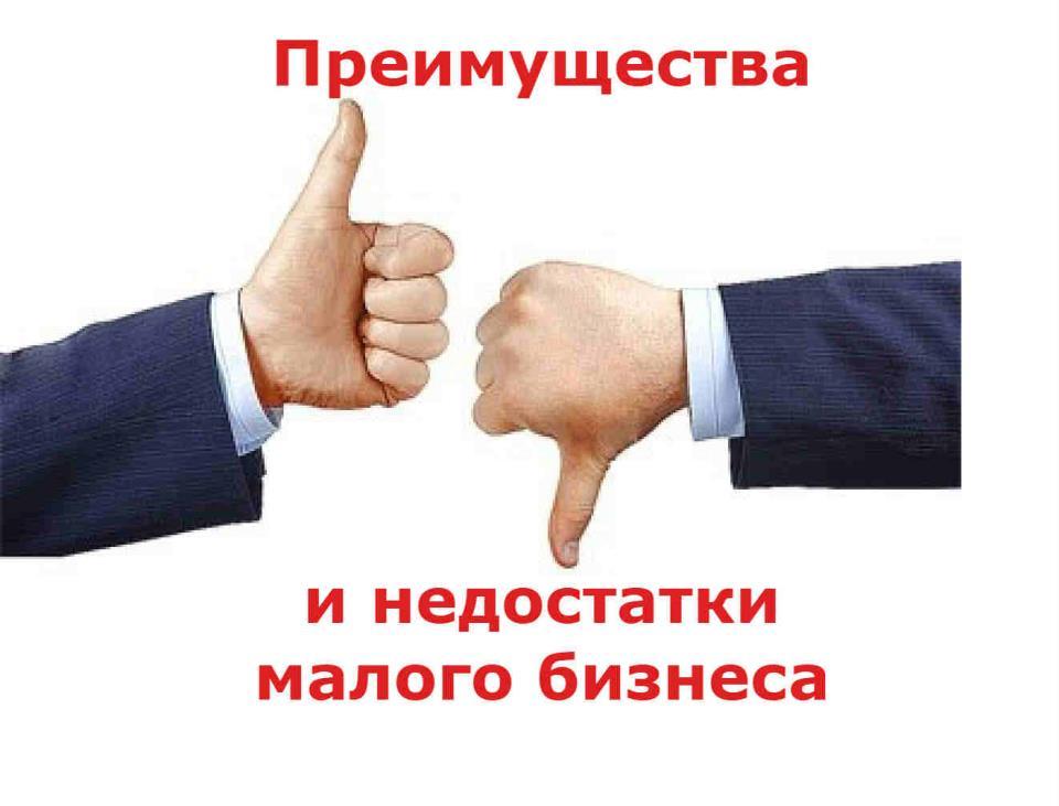 Преимущества малого бизнеса_и_недостатки