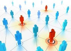 сетевая форма организации бизнеса