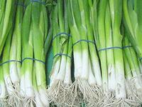 Продажа зеленого лука