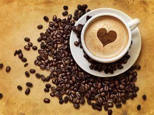 Пример с расчетами бизнес плана кафе
