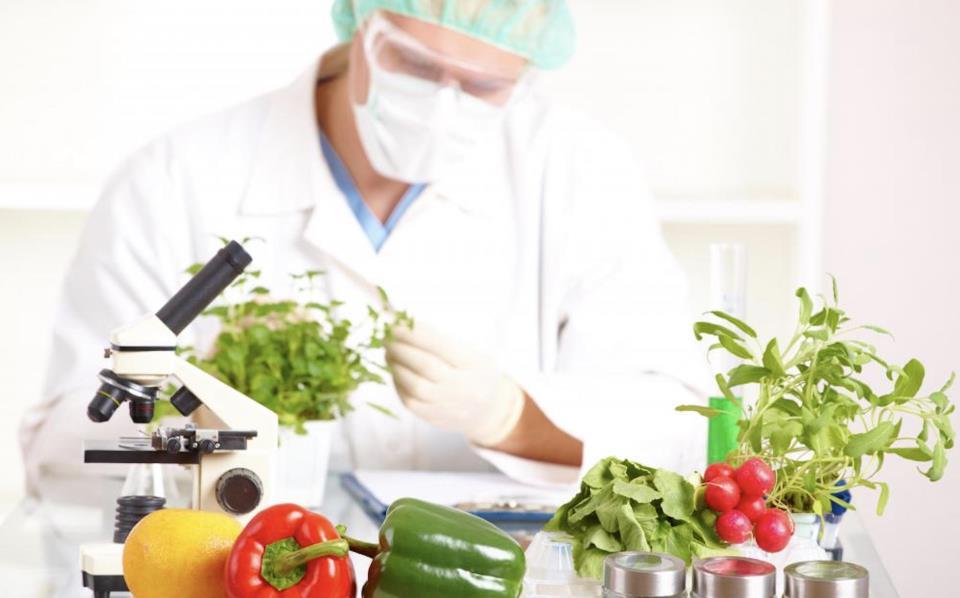 ГМО-агрономы и сити-фермеры