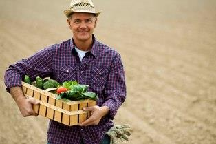 Как заработать на сельском хозяйстве