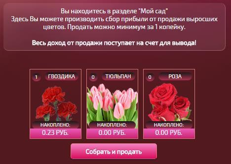 Цветочный бизнес4