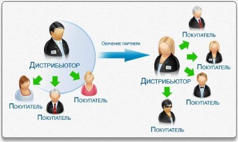 Сетевой бизнес