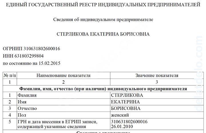 данные об ИП - выписка из ЕГРИП в формате pdf