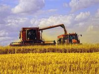 Открываем фермерский бизнес