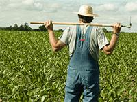 Открытие фермерского хозяйства
