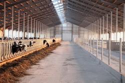 Современная ферма для КРС