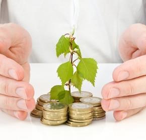 Изображение монет, которые дают зеленый росток